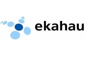 Ekahau RTLS (RFID-Over-Wi-Fi) Ensures Staff Safety With