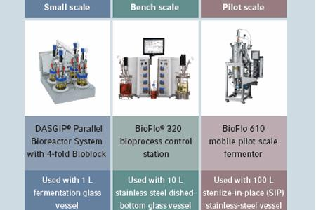 difference between bioreactor and fermentor pdf
