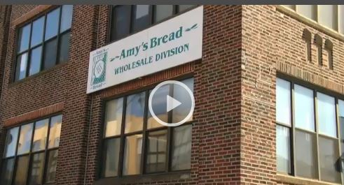 amys bread case study Case study questions 1 who are the main players (name and position) amy scherber - owner and founder of amy's bread toy kim dupree – manager of amy's bread.