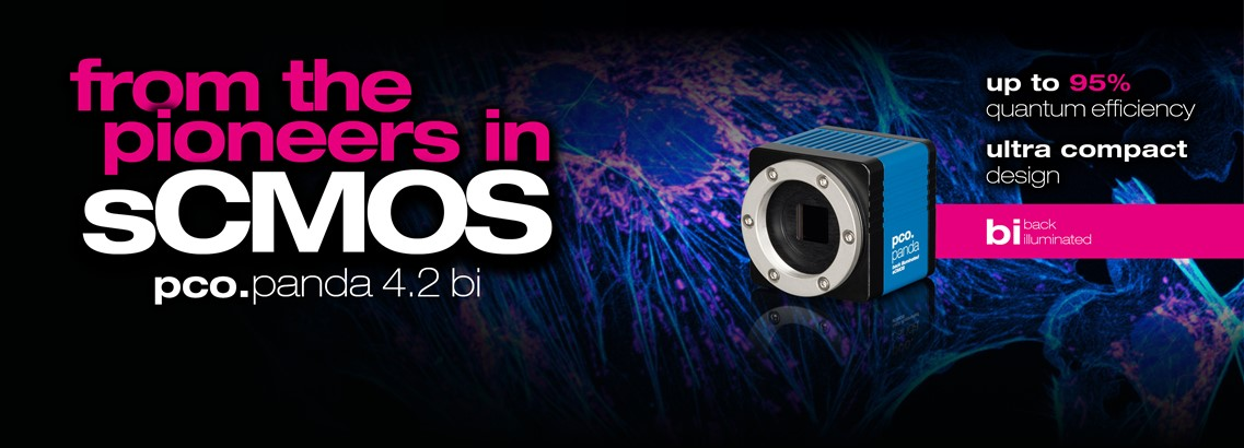 pco.panda 4.2 bi: ultra compact sCMOS camera with up to 95% quantum efficiency