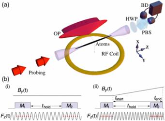 quantum-entanglement-radio-waves