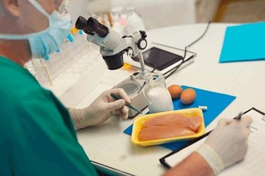 Considering In-House Food Pathogen Testing? Answer These 8 Questions