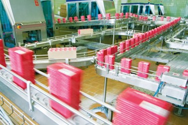 Weighing Systems for Food Packaging Systems