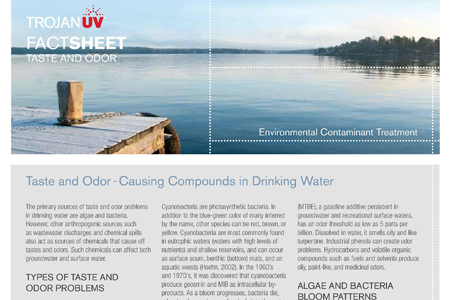 Taste and Odor Compounds in Drinking Water (Fact Sheet)