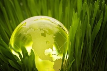 Go Green & Make Green