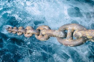 Keeping Current With The Cold Chain