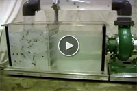 Vaughan Centrifugal Chopper Pump In Action