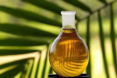 Nestle Unilever Save Palm Trees