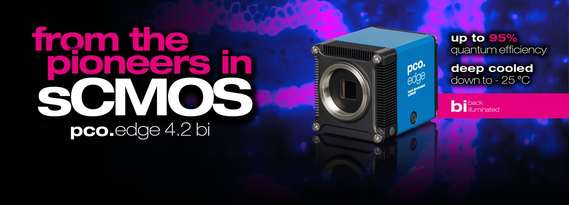 pco.edge 4.2 bi: deep cooled sCMOS camera with up to 95% quantum efficiency