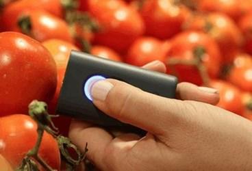 SCiO tomatoes