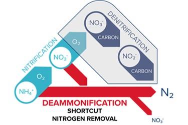 Deammonification