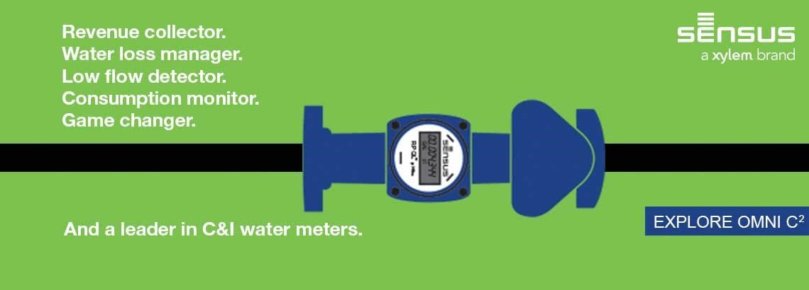 OMNI™ Compound (C²) Water Meters