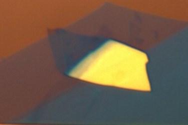 Optical micrograph