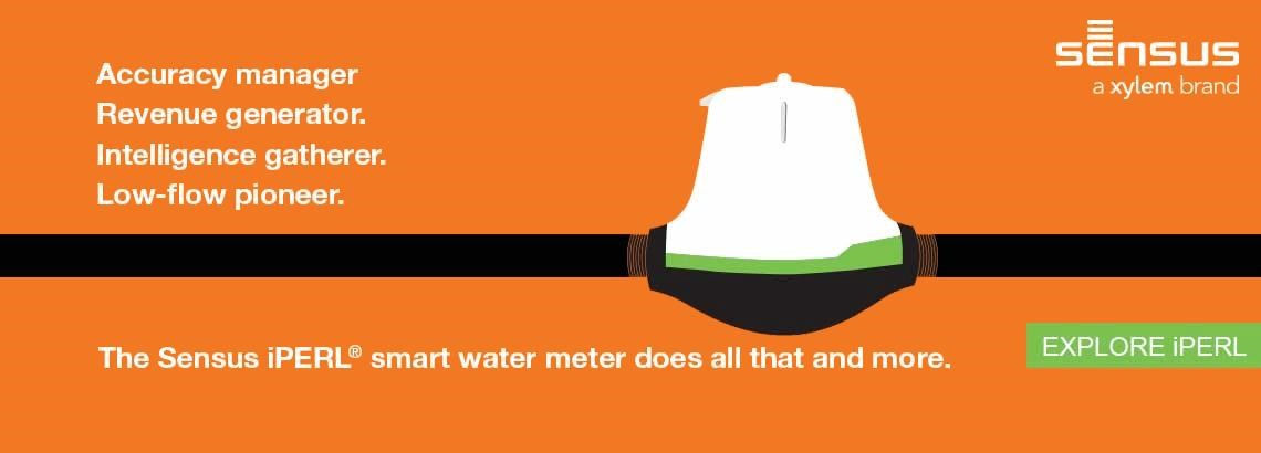iPERL® (North America) Residential Water Meters