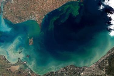 NASA_algae.jpg