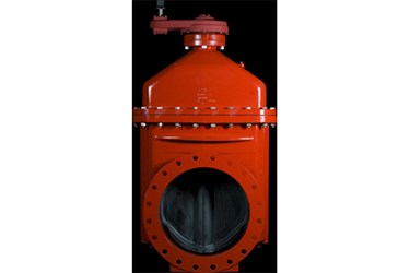14-66 Series 2500 Resilient Wedge Gate Valve