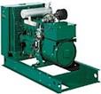 Spark-Ignited Generator Sets