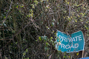 Private-Road-Thicket-iStock-1146553212