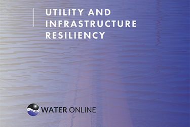 Utility And Infrastructure Resiliency
