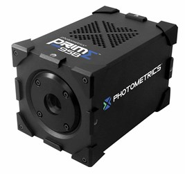 4.2 Megapixel Scientific CMOS Camera: Photometrics Prime