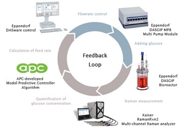 A Quality-By-Design Approach To Upstream Bioprocess Interrogation And Intensification
