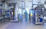 API Production Under GMP
