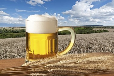 FSMA And Beer Brewers Hurt