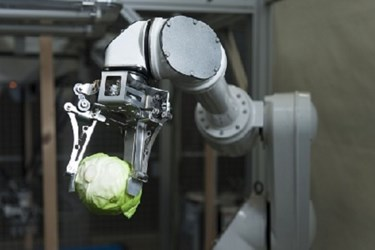 Food Processing Robots