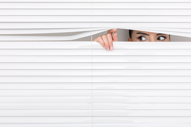 Peek-Look-Blinds-iStock-621272228