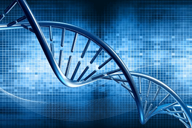 Genome Editing & The Future Of Drug Discovery