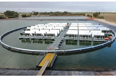 Ground-Breaking Floating Solar Technology Launches In Australia