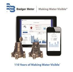 Badger Meter 110 Years