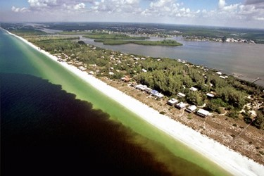Florida red tide NOAA