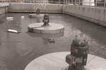 Aqua-Lator™ Direct Drive Floating Mixers