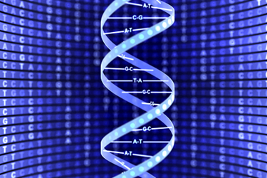 dna-sequence