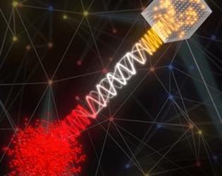 quantum-hybrid