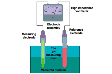Ph measurement
