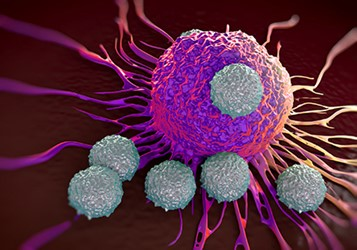 t-cell attacking cancer 450x300