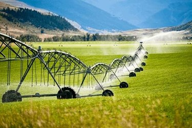 FSMA's Produce Rule: Navigating The Agricultural Water Requirements
