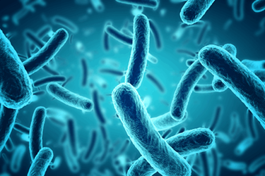 microbes-iStock-628978952
