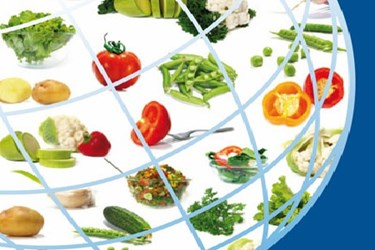 Fruit And Vegetable Producer Value Chain