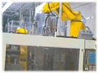 Automation for Plastic Molding Primary Molding Operations