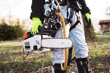 Field Service Arborist