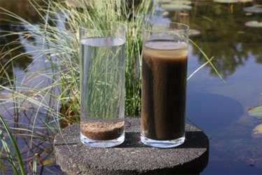 Aerobic Granular SludgevsConventional Activated Sludge.jpg