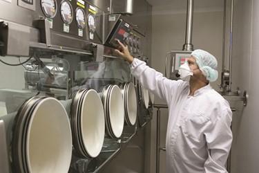Nitto Avecia Pharma Services Product/Process Development