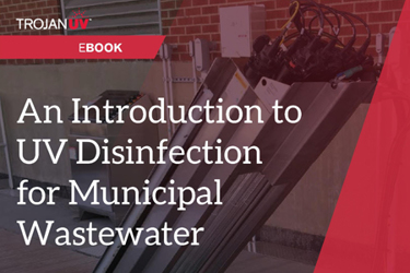 An Introduction to UV Wastewater Disinfection-eBook-FINAL.jpg