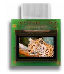 MicroOLED Microdisplay Series