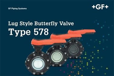 Lug Style Butterfly Valve: Type 578