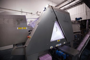 Quebec Wild Blueberries Installs VERYX® Sorter from Key Technology for Additional Quality Control