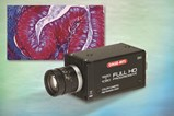High Definition (HD) CMOS Camera for Microscopy and Industrial Imaging: HD-210U
